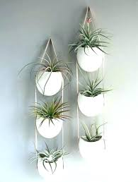 wall mounted flower pots wall mounted plant holders indoor wall plant indoor wall plant holders best wall mounted flower pots