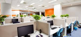 office design pictures. interesting design the office is the latest place to succumb eco design movement  sweeping interiors scene traditionally offices were drab characterless places  on office design pictures
