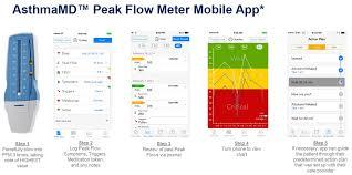 Asthmamd Peak Flow Meter Chart Asthmamd Peak Flow Meter