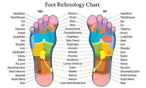 Learning Foot Reflexology Chart Wall Art Large High Res