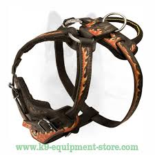 adjule leather dog harness with quick release buckle