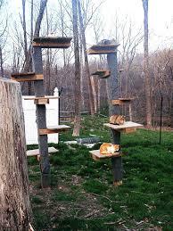 outdoor cat tree house