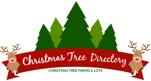 Christmas Tree Lot A HUGE Success In 2015 U2013 Centerville Noon OptimistLocal Christmas Tree Lots