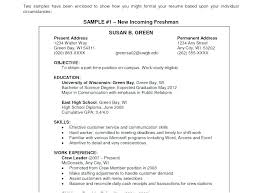Resume Examples Of Objectives Objective In Resume Examples General ...