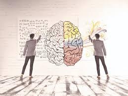 Resultado de imagen para neurociencia