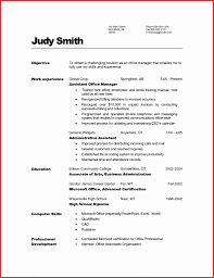 Computer Skills Resume Sample 100 Inspirational Computer Skills Resume Example Resume Writing 64