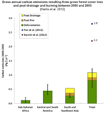 deforestation accounts for percent of global carbon emissions  countries the highest gross forest loss between 2000 and 2005 according to the new study