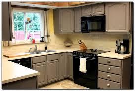 Kitchen Cabinet Colors Ideas Best Ideas