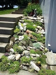 diy rock garden ideas creative of rock garden best ideas about rock garden design on garden diy rock garden ideas