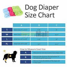 Dog Diaper Size Chart Details About 3pcs Washable Dog Diaper Female Pet Pant Reusable Puppy Doggie Diapers S M L Xl