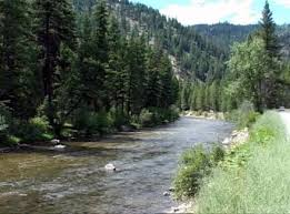 Hatches And Trout Flies For The Bitterroot River In Montana