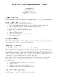 Resume Summary Statement Example Publicassets Us