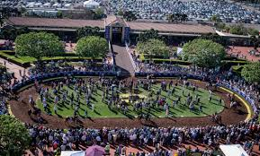 Del Mar Breeders Cup Seating Chart Del Mar Embracing Breeders Cup Buzz After Santa Anita