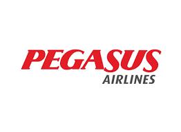 """Résultat de recherche d'images pour """"pegasus airlines"""""""