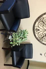 decorative plants for office. OFFICE GREENERY Decorative Plants For Office O