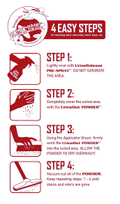 ... 4 Easy Steps for removing a variety of stains