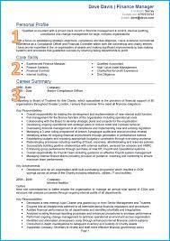 Resume Cv Chronological Resume Cv Blue Line Design Resume And Cv