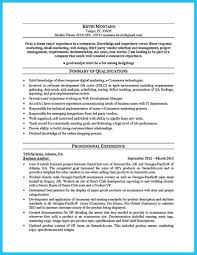 It Business Analyst Resume Best Of Business Analyst Resume Objective