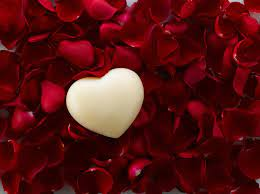 White Heart and Red Rose Petals HD ...