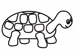 Small Picture turtle coloring pages pdf Archives Best Coloring Page