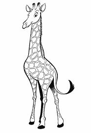 Dieren Kleurplaten Giraf