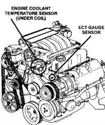 solved serpentine belt diagram for a 1995 plymouth grand fixya serpentine belt diagram for a 1995 plymouth grand mabpest gif