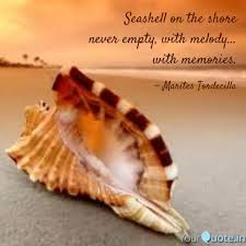 sea shell quotes seashell on the shore nev quotes writings by mari