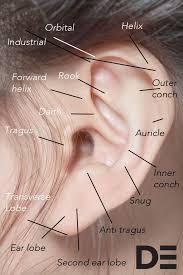 Chart Of Ear Piercings Ear Piercings Your Definitive Guide Grazia