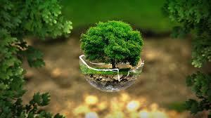 """Résultat de recherche d'images pour """"environment and ecology"""""""