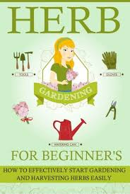 herb gardening for beginners how to