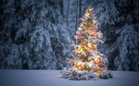 christmas snow wallpaper hd. Plain Wallpaper HD Wallpaper  Background Image ID314289 2710x1814 Holiday Christmas For Snow Hd H