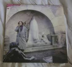 scvinyl records guide