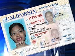 Cailf Law License Cbs Applications Almost Immigrants Receives – Took Effect Sacramento Since 500k Illegal From Driver's New
