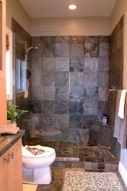 Surprising Small Bathrooms With Shower Toilet And Sink Photo Design  Inspiration
