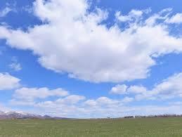 4月の空景色 - グリーンフォレスト (歳時日記)