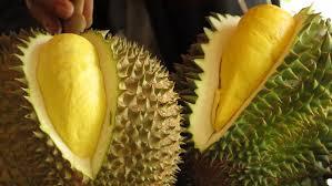 raja buah