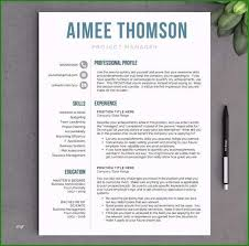 Modern Resume For Freshmen Wondrous Modern Resume Template Free Download That Get