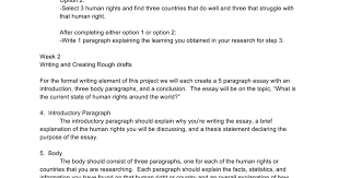 Essay writing introduction paragraph EssayPro Pinterest
