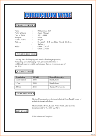 Resume Profile Examples For Students Cv Profile Examples Student Personal Format For Students Example 39