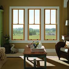 Blinds Between The Glass  Doors U0026 Windows  The Home DepotDouble Hung Windows With Blinds Between The Glass