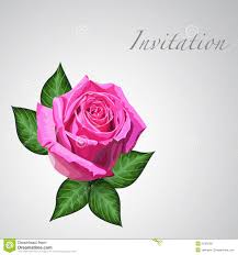 gift card with pink rose flower