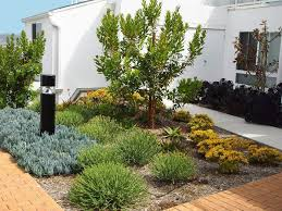 Small Picture 68 best Water wise yard images on Pinterest Landscaping