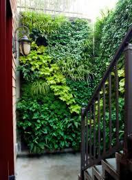 Terrace and Garden: Indoor Vertical Garden Design - Green Walls