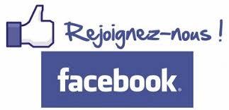 """Résultat de recherche d'images pour """"logo site facebook"""""""