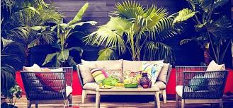 trees and trends furniture. Captivating Trees And Trends Decorations Online Coupons .  Furniture L