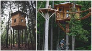 Tree House Photos Touring Ethans 360a0 Rotating Tree House And Bicycle Elevator Tree