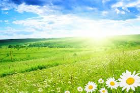nature backgrounds hd.  Nature Nature Backgrounds Hd Wallpapers Mother Nature Windows Flower Images  Green To Backgrounds