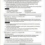 B2b Sales Resumes B2b Sales Resume Template Inside Sales Rep Resume Sample Monster