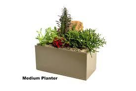 concrete planter smll plnter tall planters diy cast boxes christchurch