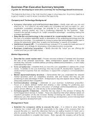 executive business plan template co executive business plan template